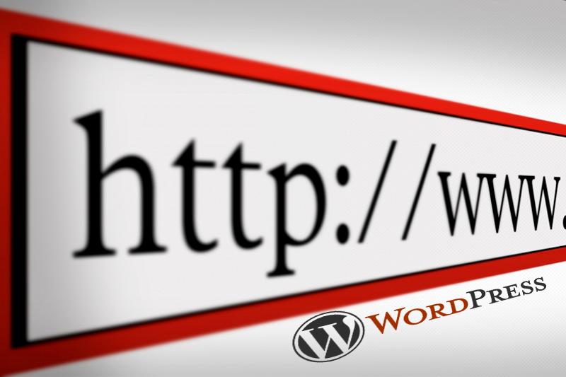 Constructie si optimizare website SEO in piatra neamt