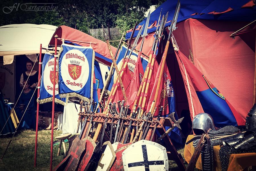 Lupte la Cetatea Neamtului (19)